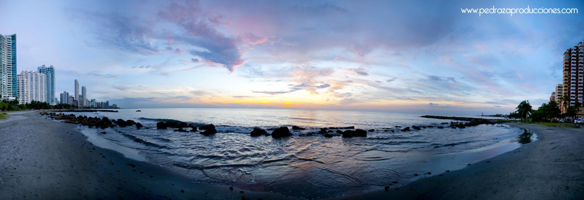 sunsetcatg